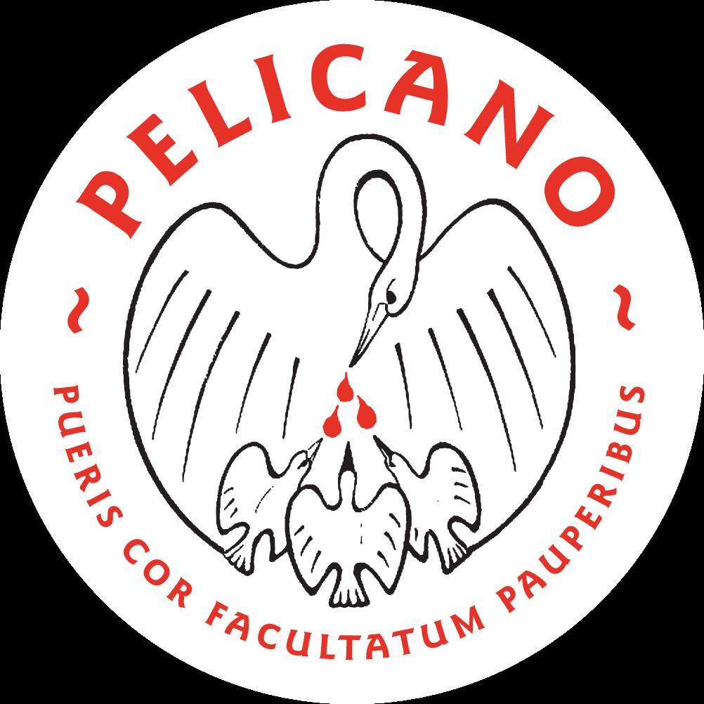 Penningen tvv Pelicano Stichting